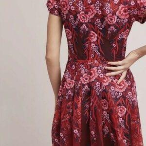 Eva Franco Dresses - Anthropologie/Eva Franco Rosa Dress - SZ 4P